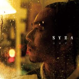 disc_syza.jpg