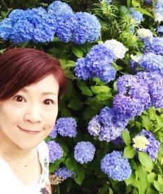 2015-06紫陽花