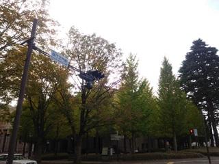 151023 utsunomiya-02