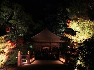 151111 shiramizu-03
