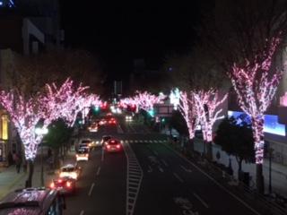 写真12月4日.JPG