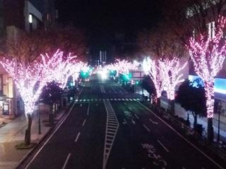 151202 sakuramatsuri-01.jpg
