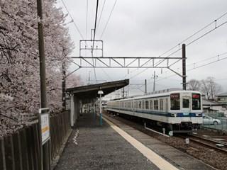 160404 mibu-06.jpg