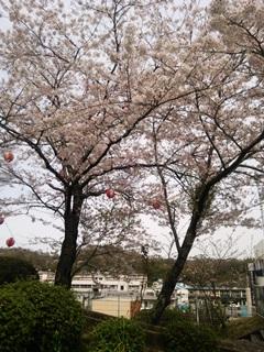 160414 yumoto-04.jpg